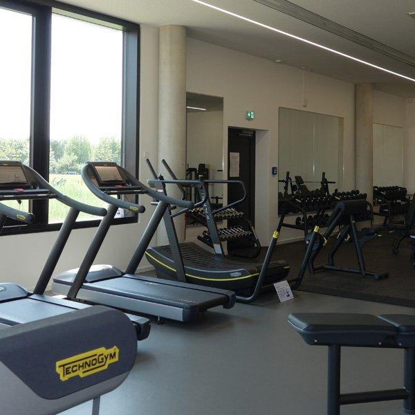 Gerätepark mit TechnoGym Fitnessgeräten im SportQuadrat